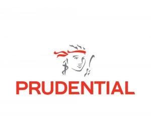prudential-windscreen-insurance-panel